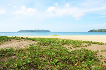 El Nido Nacpan Beach 00