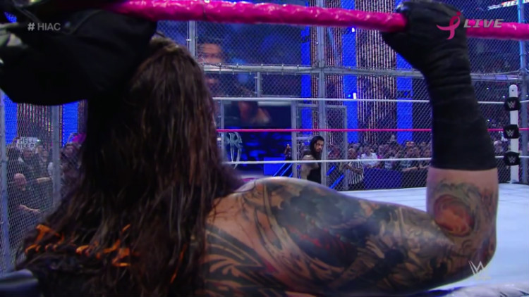 bray wyatt vs roman reigns hell in a cell 2015