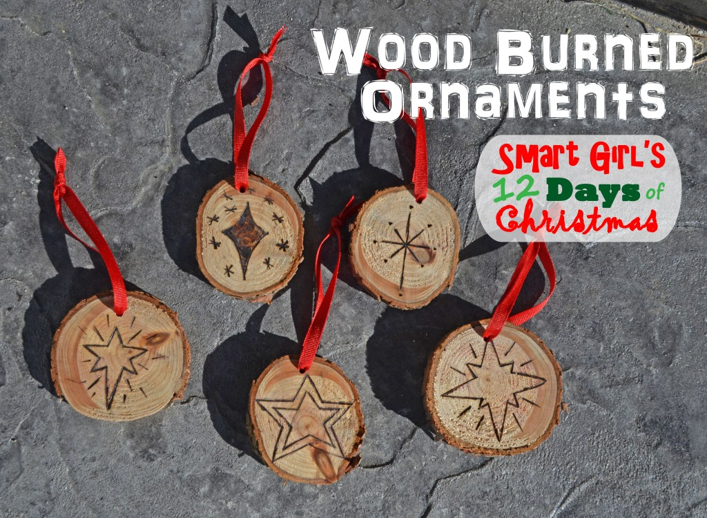 Smart Girl's 12 Days of Christmas - Wood Burned Oraments