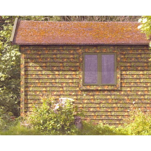 Medium Crop Of Vinyl Log Siding