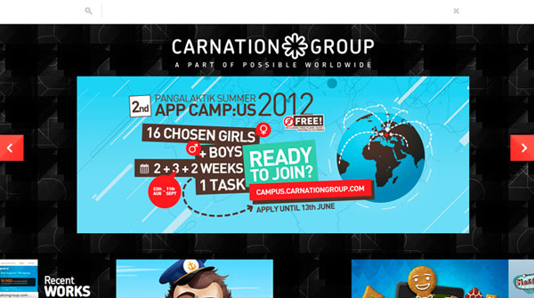 Carnation Group Web Design Inspiration #7