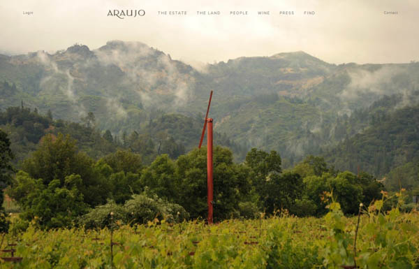 araujo Web Design Inspiration #9