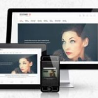 best-portfolio-wordpress-theme