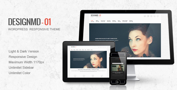 best portfolio wordpress themes 04 25 + Best Portfolio WordPress Themes for August 2012