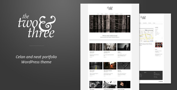 best portfolio wordpress themes 11 25 + Best Portfolio WordPress Themes for August 2012