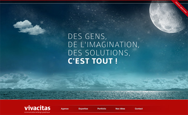 Vivacitas Web Design Inspiration #17