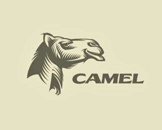 camel logo 13 15 Camel Logo Design for Inspiration