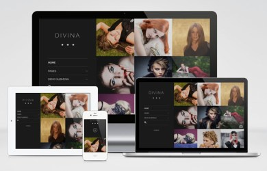 divina-wordpress-theme-01