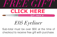 Sigma Beauty free Gift 2013 Sigma beauty coupon code sigma brushes June July August September November December 2013 2014