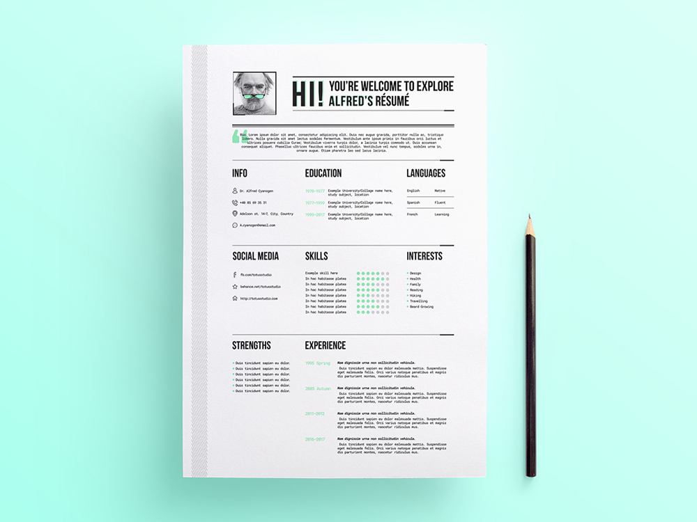 Free Professional Looking Resume Template with Stylish Design - best looking resumes