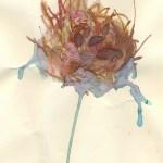 Bird-dry by Paloma Gustafson-Ika