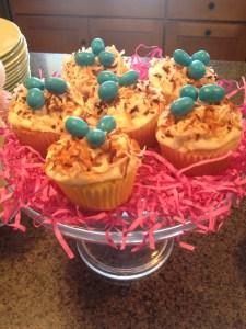 Robin's Eggs Cupcakes