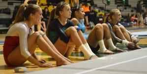 Recap: Gymnastics State