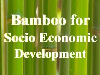Bamboo for social economic development