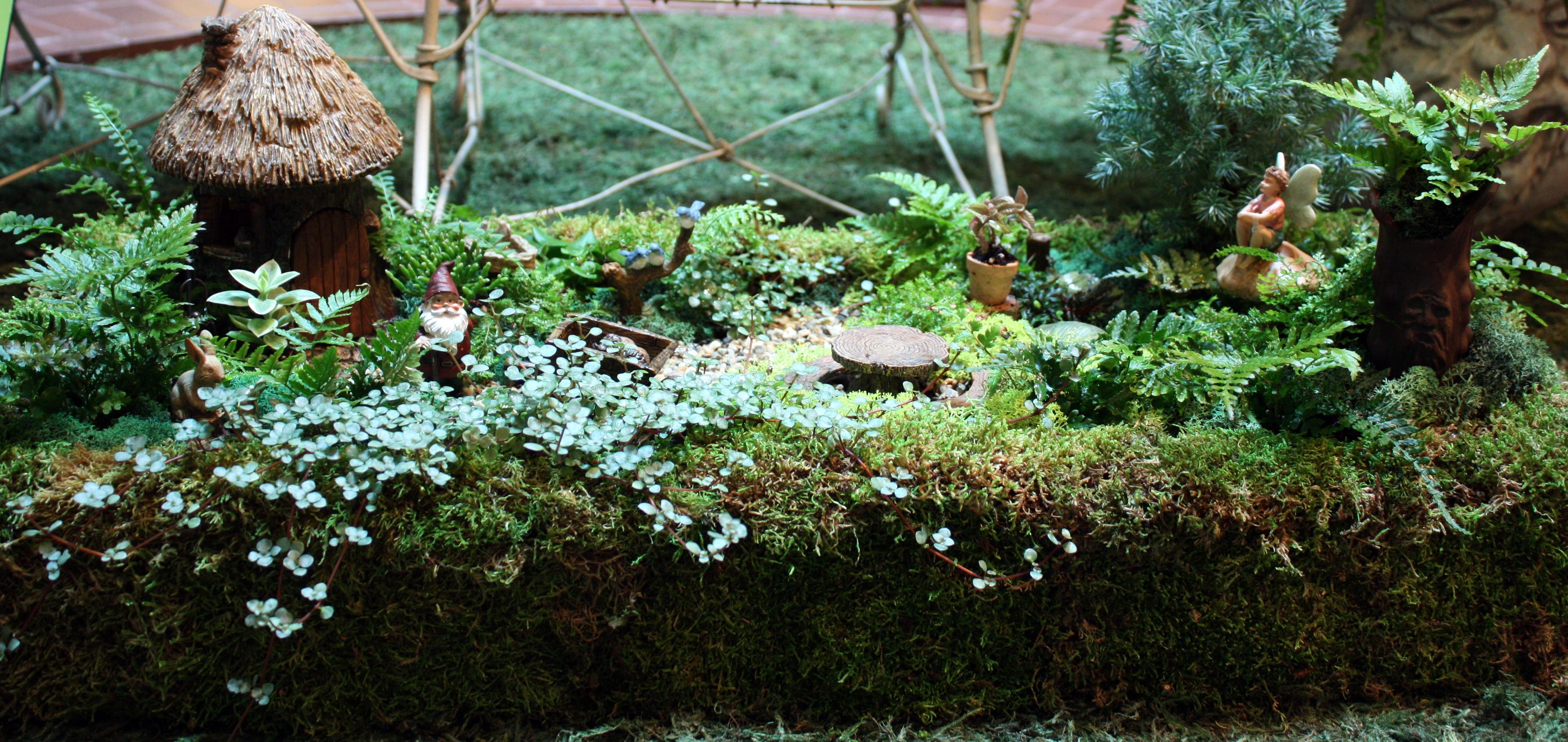 Impressive Fairy Gardens Fairy Garden Container Gardens Smithsonian Gardens Containers garden Containers For Fairy Gardens