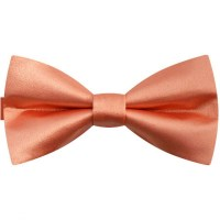 Classic bright salmon orange bow tie for men, smart styl ...