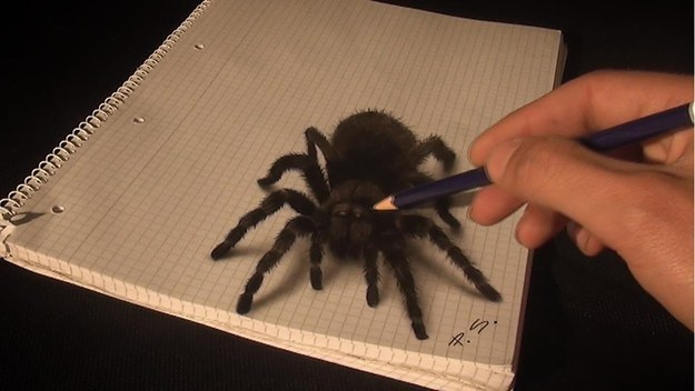 3D Drawing (2)