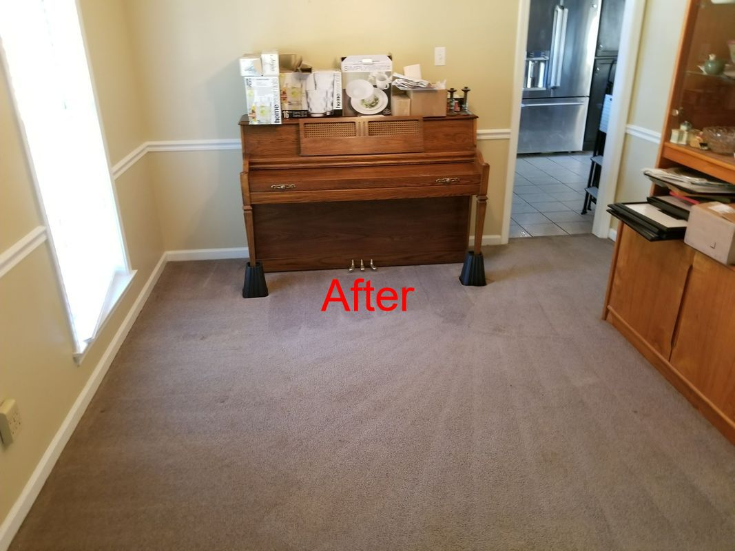Memphis Area Rug Carpet Cleaning Services Servicemaster