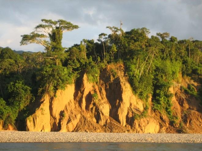 Peruvian jungle, Peru