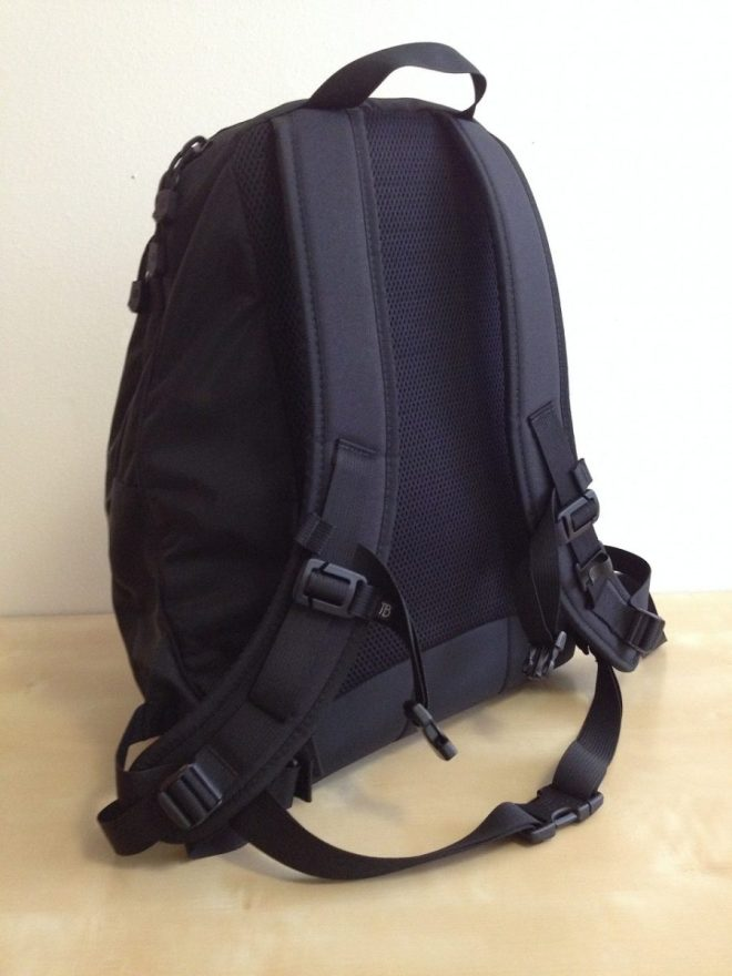 Tom Bihn Synapse 25 back panel and straps