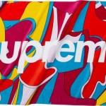 6月25日 SUPREME レギュラーアイテム 海外予定ラインナップ