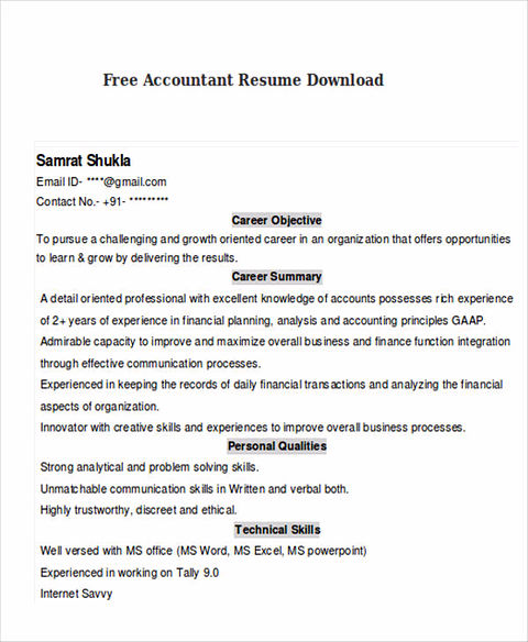 key skills for accountant resume
