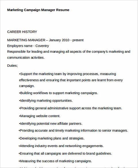 Campaign Manager Resume Env 1198748 Resumecloud   Affiliate Manager Resume  Campaign Manager Resume