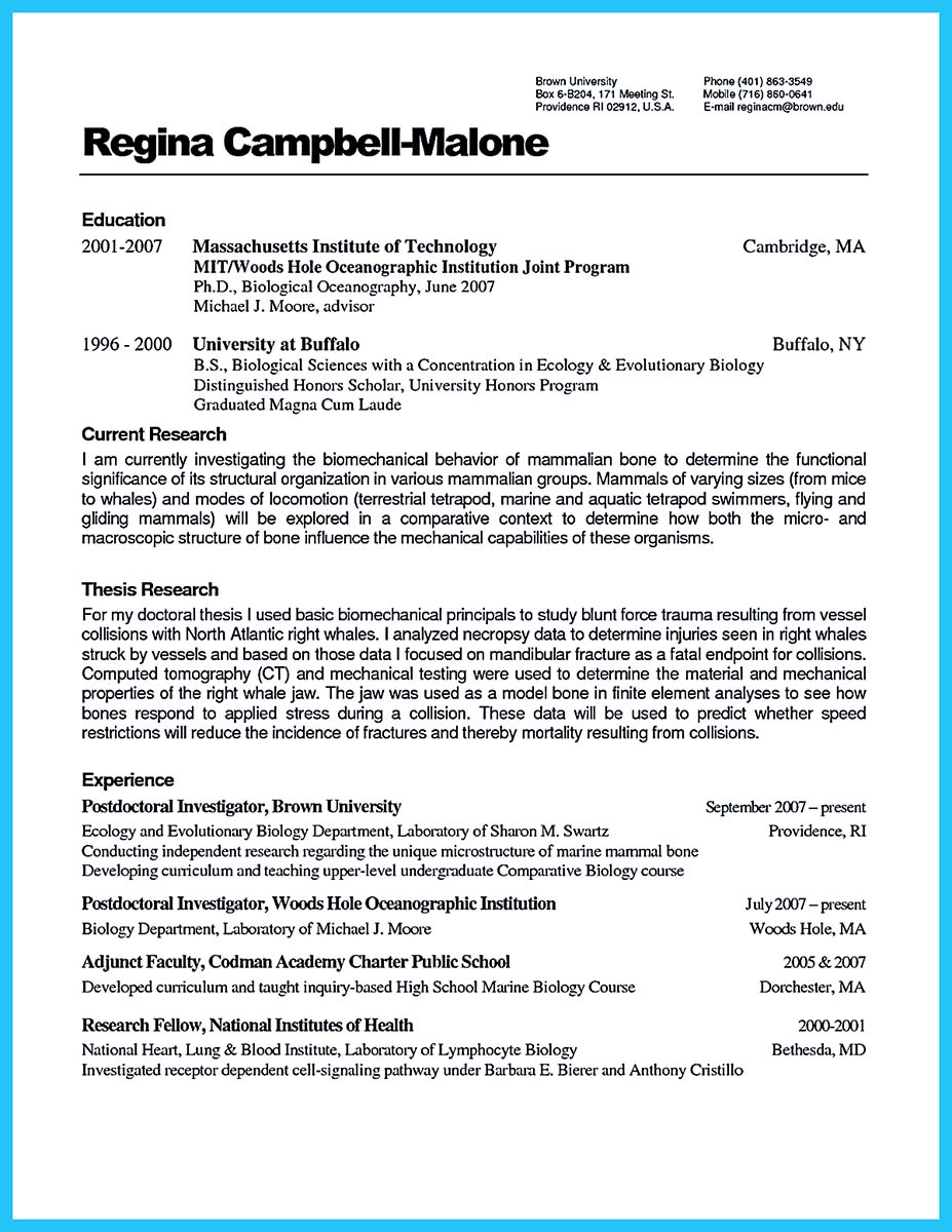 creating resume database access database developer resume must be written how to write a resume in