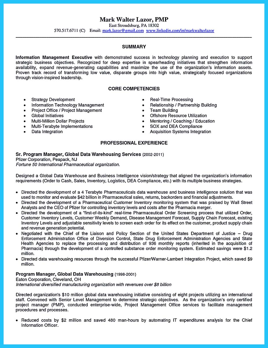 sample resume for business intelligence project manager
