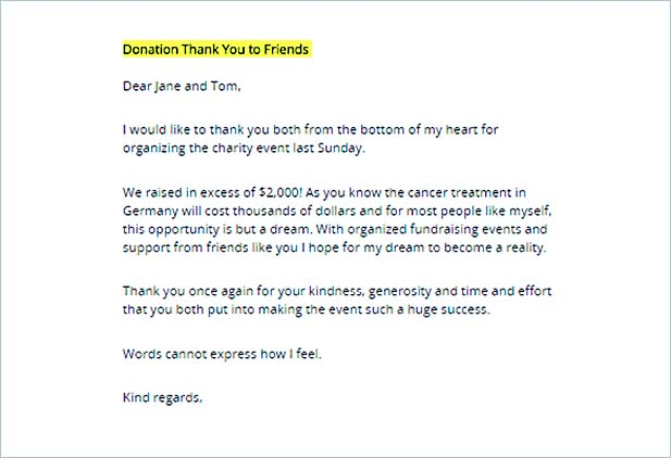 Non Profit Thank You Letter Sample Fundraising Letter Donor Thank - donation thank you letter