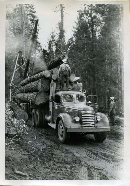 Jammer loading logs