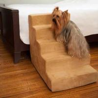 dog steps for bed - DriverLayer Search Engine