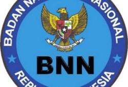 Penerimaan CPNS Badan Narkotika Nasional 2010
