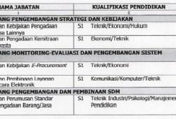 Info Lowongan CPNS LKPPN 2012