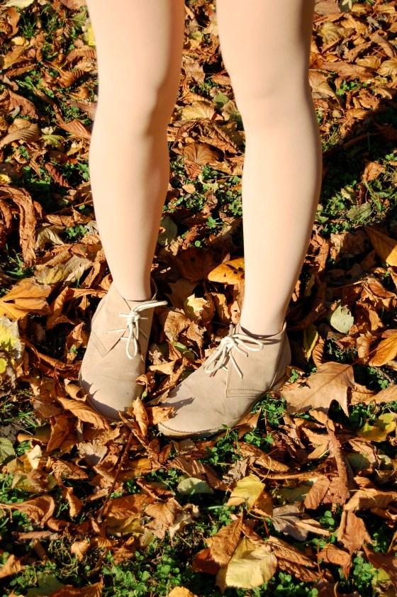 fall desert boots
