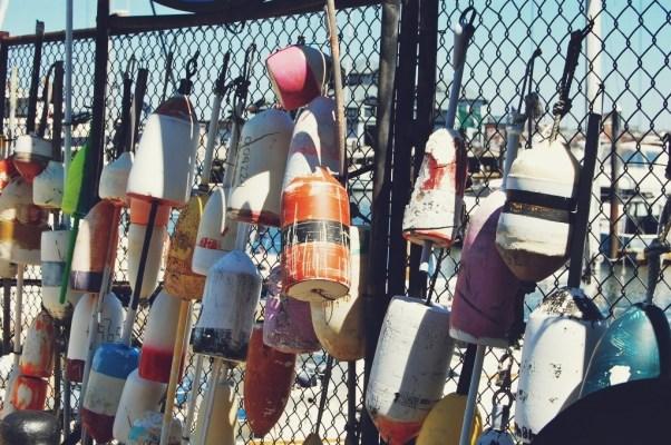 buoy photo