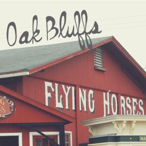 oak bluffs flying horses carousel