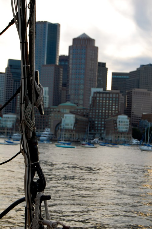 boston harbor cruise review