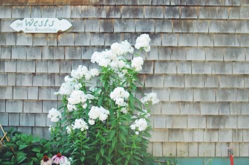 New England Homes