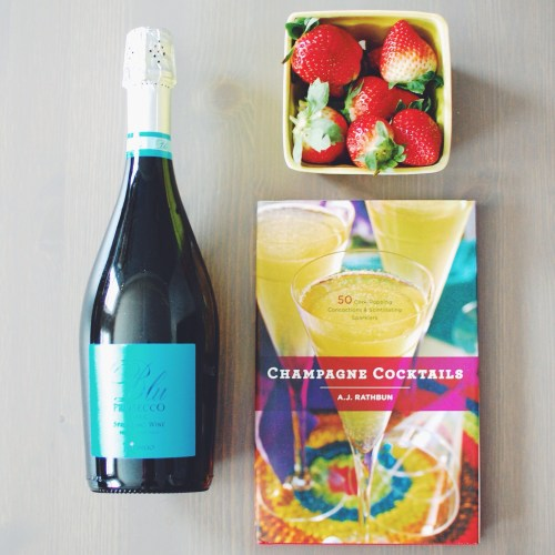 Champagne Cocktails Book