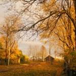Звуки сюжетов: осень