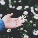 Исцеление — это твоя готовность любить всё в себе