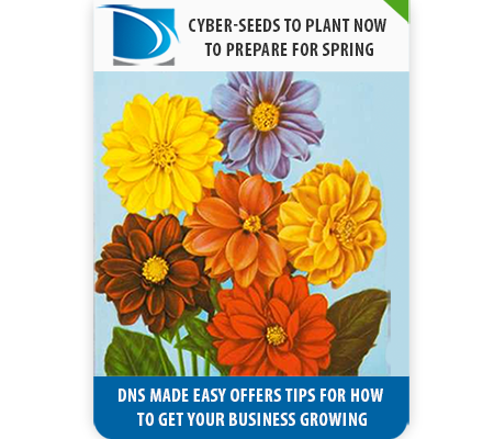 5 Cyber-Seeds to Plant Now to Prepare for Spring