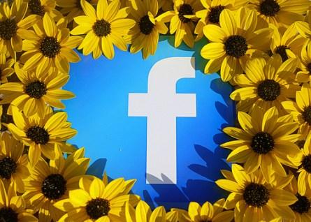 facebook photo library