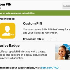 BlackBerry Updates BBM With Custom PINs And Ad-Free Subscriptions