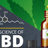 CBD – What, why, and how [Infographic]