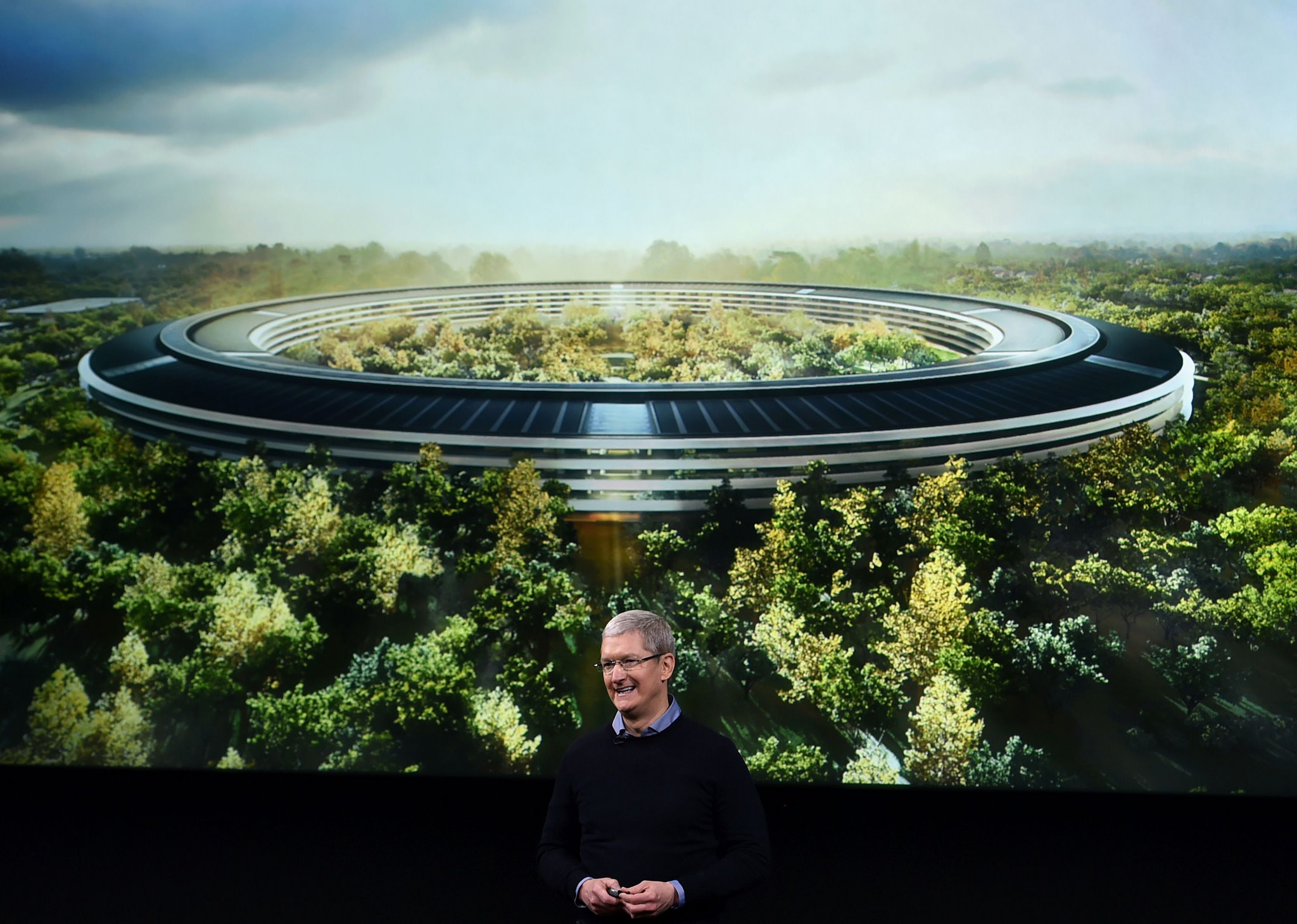Apple Employees Keep Smacking Into Their New Headquarters' Glass Walls