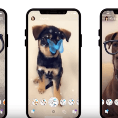 Snapchat Added Dog Lenses – Will You Use Snapchat Again?
