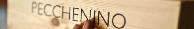 WinePorn: Fall Vineyards of Barolo at Azienda Pecchenino