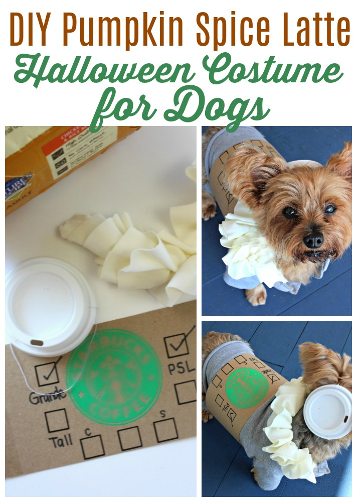 DIY Pumpkin Spice Latte Halloween Costume for Dogs